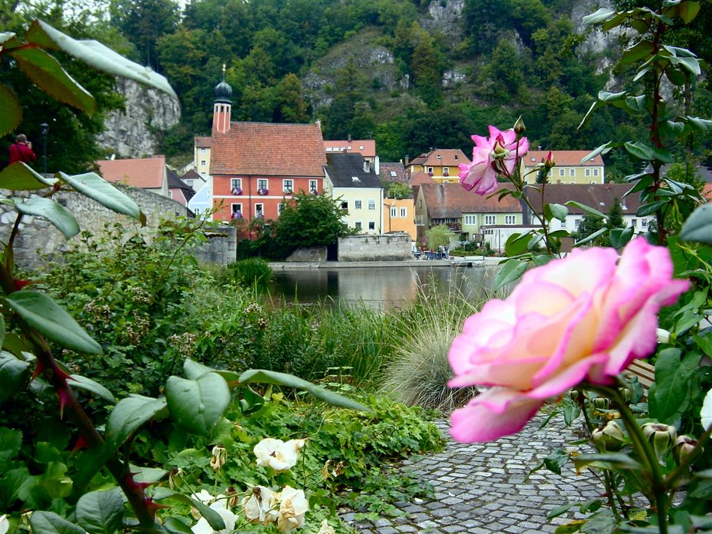 roses-and-river