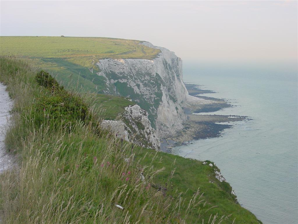 White Cliffs of Dover (1)