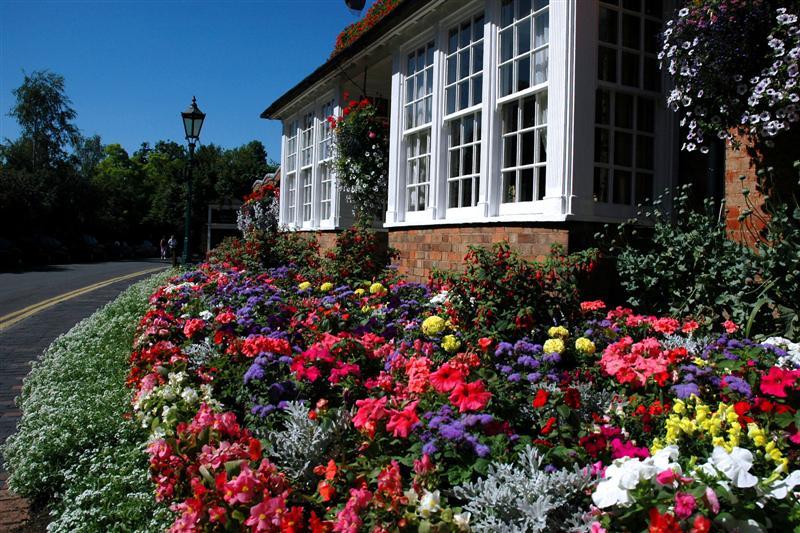 Stratford flowers
