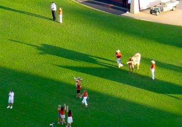 Bevo casts a big shadow