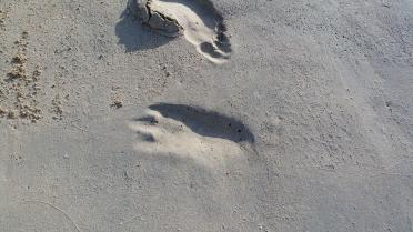 Alien footprint on Emerald Beach