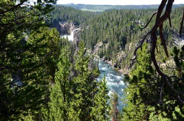 Upper Falls and Yellowstone River